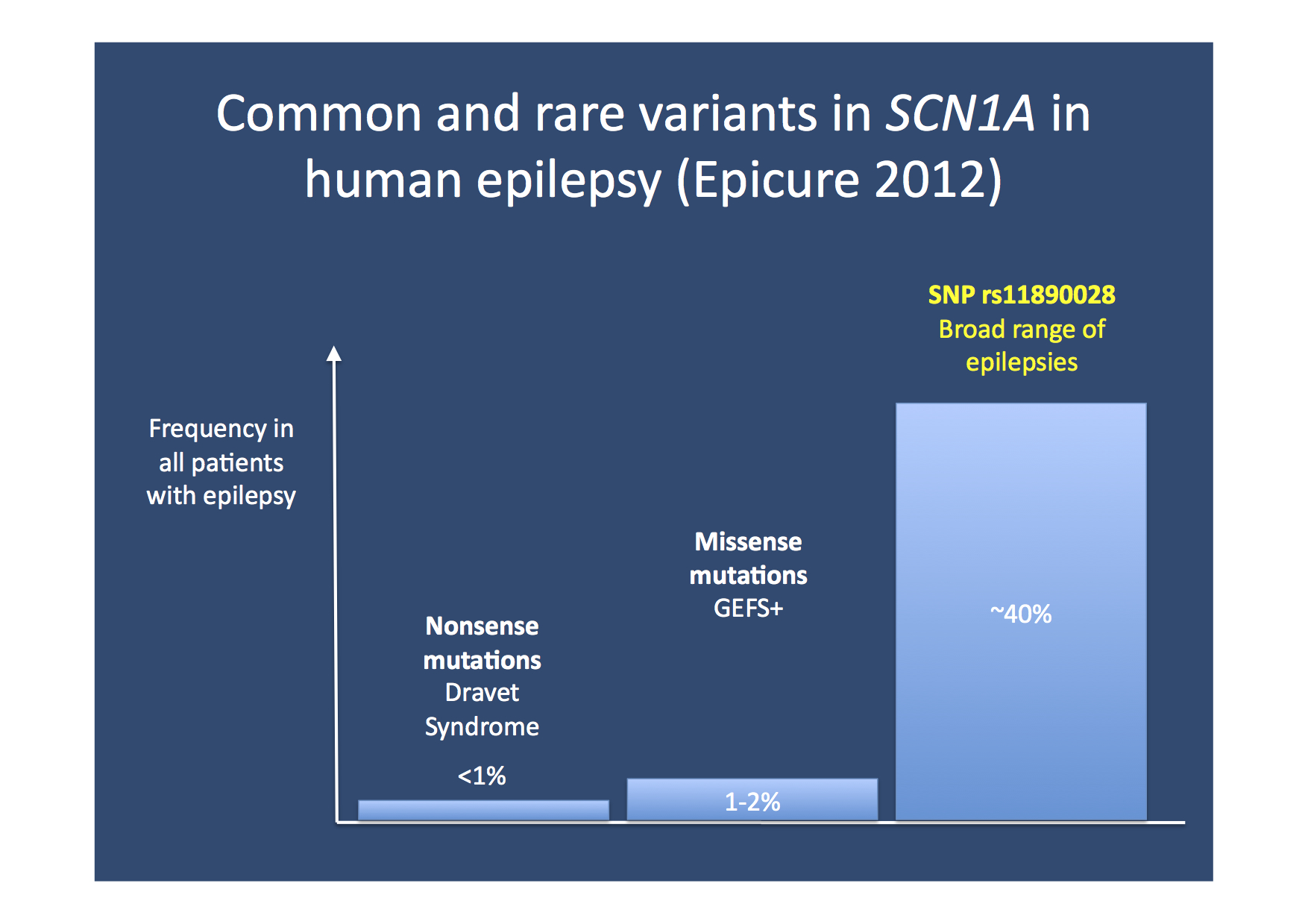 In defence of common variants. The recent EPICURE GWAS identified an intergenic variant in proximity of SCN1A as a common risk factor for a wide range of epilepsies. Even though rare, highly penetrant variants in SCN1A causing Dravet Syndrome receive most of the attention, common variants have a strong impact on the population level. Despite the fact that common variants are also present in a large proportion of unaffected individuals, the population-attributable risk of common risk factors is probably higher than the cumulative impact of mutations causing Dravet Syndrome or GEFS+.
