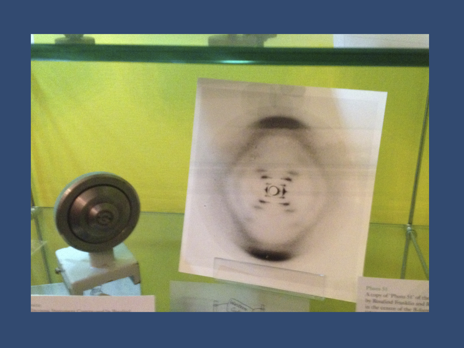 The initial X-ray of DNA by Rosalind Franklin, which led to the suggestion that DNA might actually be a double helix (photo taken at King's College, London in 2012). In contrast to her peers Watson, Crick, and Wilkins, Franklin did not receive a Nobel Prize.