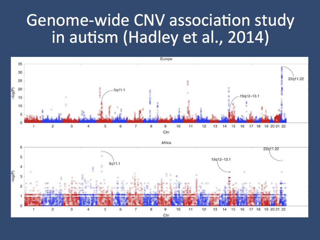 The study by Hadley and collaborators also included a genome-wide CNV association study in of 4,634 cases versus 4,726 controls in Europeans and of 312 cases versus 4,173 controls in Africans. They identify three already known chromosomal regions including copy number variants at 22q11.22, 15q12-13.1, and 5q11.1. They go on to use the CNV data for a gene family interaction network (GFIN) analysis. (reproduced under a Creative Commons License from http://www.nature.com/ncomms/2014/140606/ncomms5074/full/ncomms5074.html)