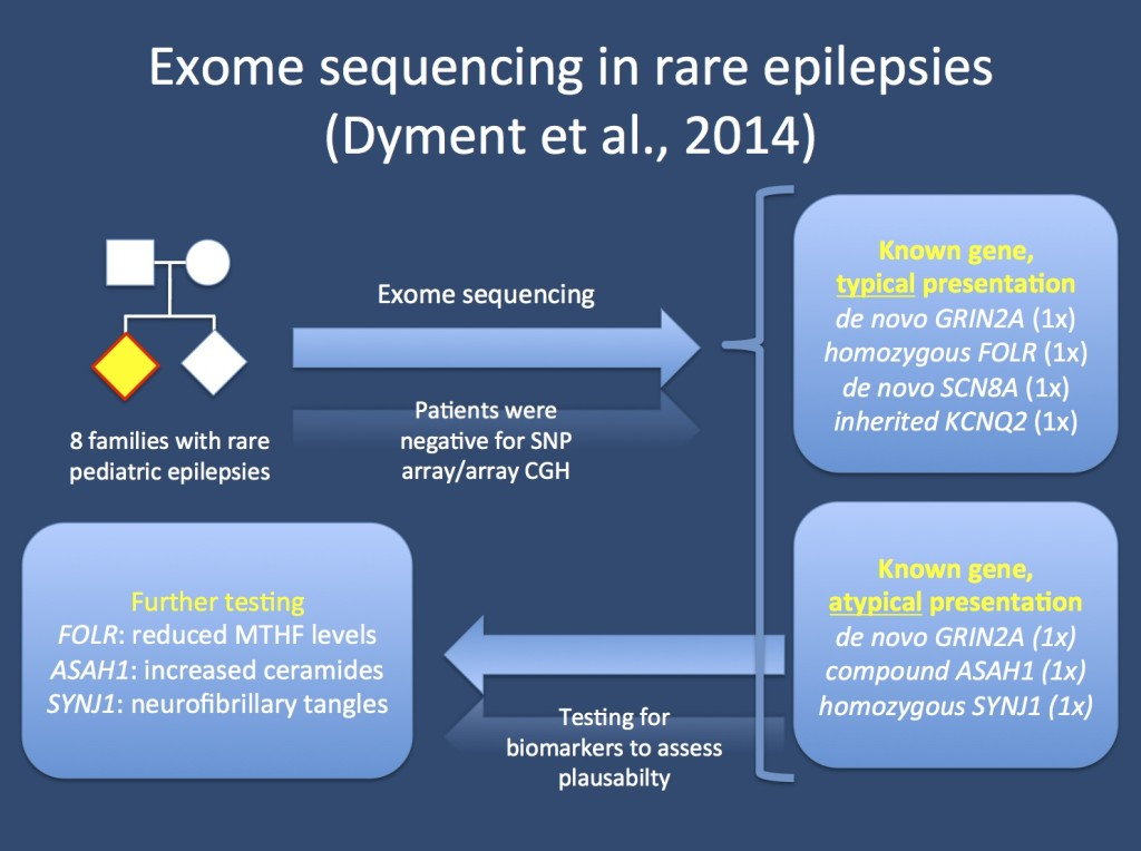 Study by Dyment and collaborators, which aims to assess the genetic basis in 8 families with presumably genetic epilepsies.