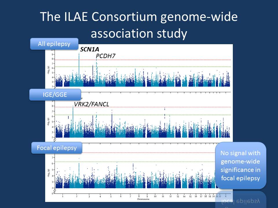 The Manhattan plot of the ILAE Consortium GWAS. A Manhattan plot shows the level of significance for all markers in the genome across all chromosomes. The chromosomes are arranged from 1 to X on the x-axis, the y-axis shows the negative logarithm of the the p-value. This way, a highly significant p-value (10 e-8) will have a high peak (8), while all other non-significant markers will disappear in the lower, noisy region. Only the peaks that stand out and pass the threshold for significance would be considered relevant (adapted from the publication by the ILAE Consortium on Complex Epilepsies, which was published under Creative Commons Licence)