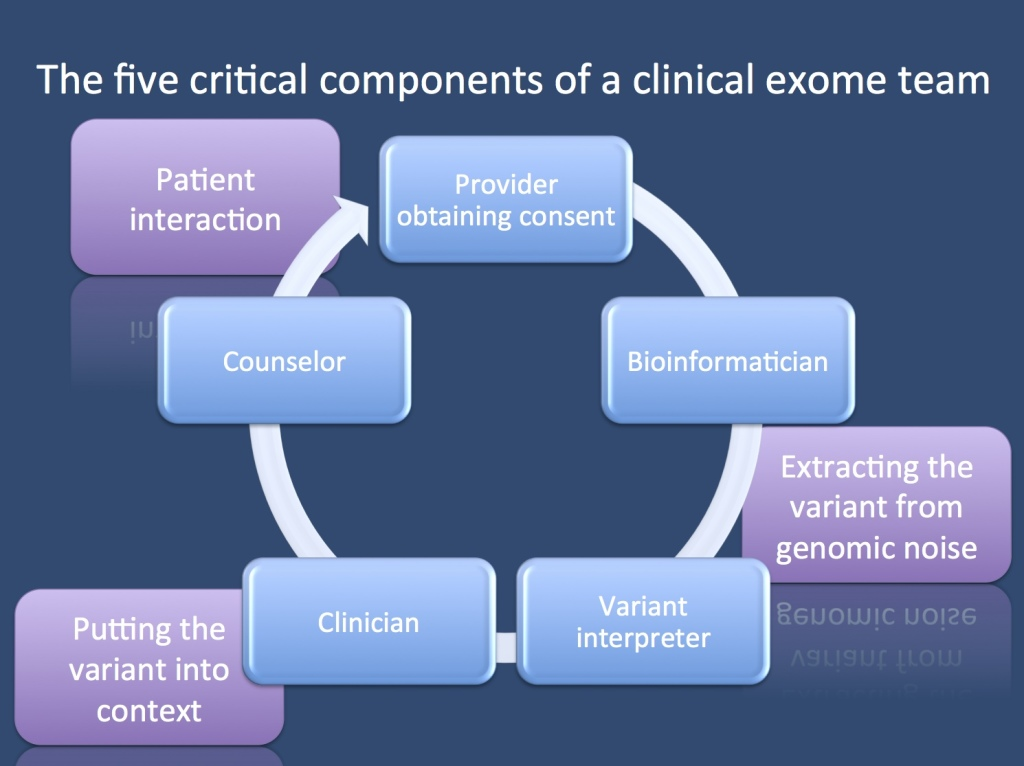 The five components of a clinical exome team.