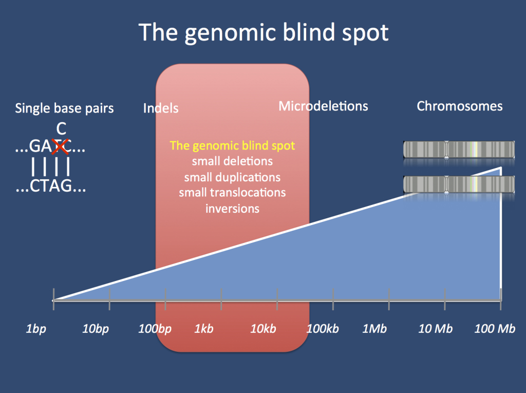 The genomic blind spot. There is a gray zone between the lower level of variation that can be detected with microarrays and the upper level of what conventional NGS technologies such as exome sequencing can detect. Variants of a certain size are difficult to assess using these technologies, and modification of whole-genome sequencing approaches may capture part of the variation hidden in this gray zone.