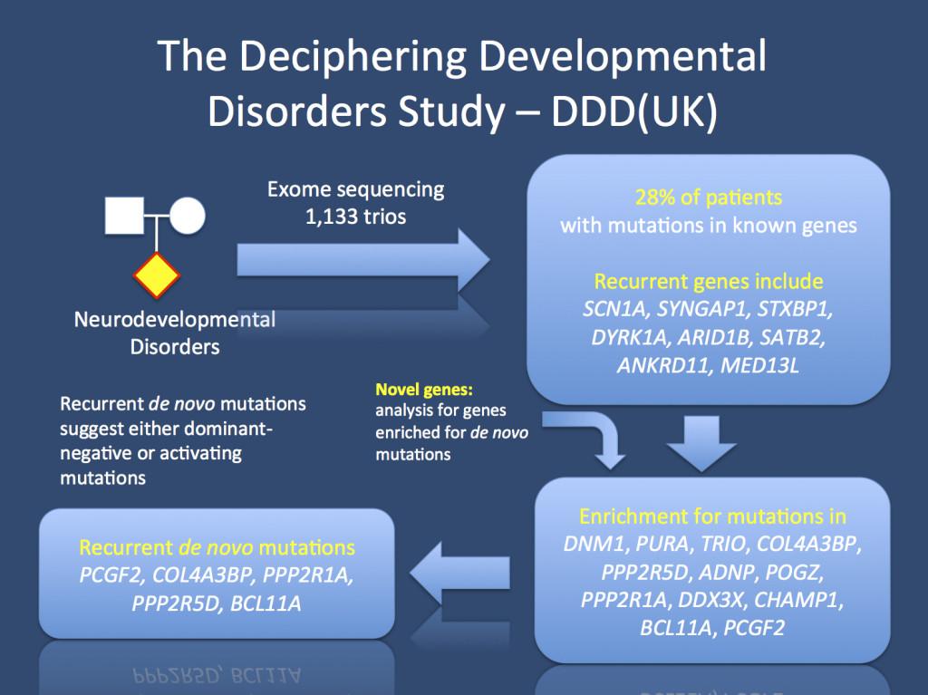The DDD(UK) study