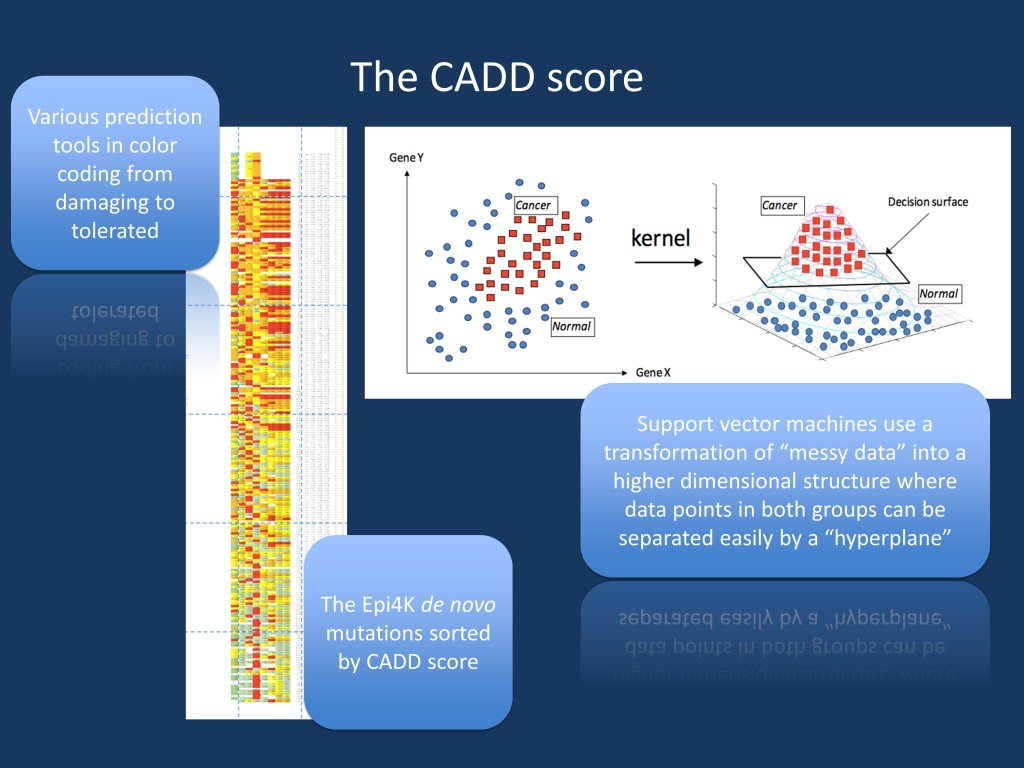 "What the CADD score does. This is a prediction about the Epi4K de novo mutations. On the left, several functional annotation tools including SIFT and Polyphen are color coded from tolerated to damaging. The entire table was then sorted by the CADD score. It can be seen that at the top, there is more red (damaging) than green (tolerated) but this distinction does not hold up for each and every prediction tool. The CADD score aggregates the information of all these predictors. A link to the full table can be found here. The right hand side figure is modified from a presentation entitled ""From A Gentle Introduction to Support Vector Machines in Biomedicine"" by Alexander Statnikov (New York University), Douglas Hardin (Vanderbilt University), Isabelle Guyon (ClopiNet), Constantin F. Aliferis (New York University) available at http://www.med.nyu.edu/chibi/sites/default/files/chibi/Final.pdf. We understand that this presentation is not copyrighted and we have approached the author to clarify that this permission is correct."