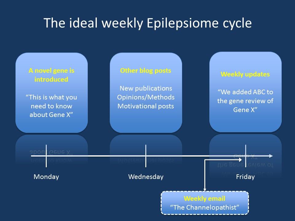 Epilepsiome Slide1